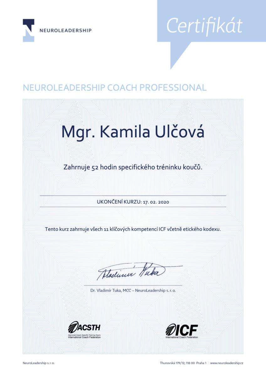 certifikat3